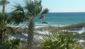 228 Walton Magnolia Lane Unit 5, Inlet Beach FL 32413 - Inlet Beach Real Estate